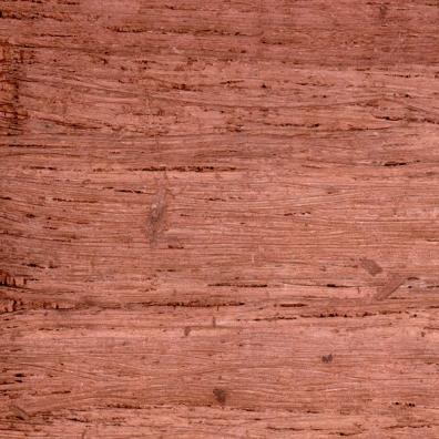 bark paper texture