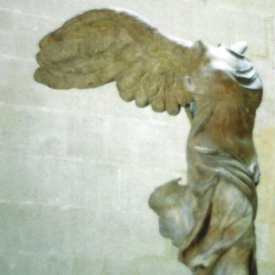 wing shape