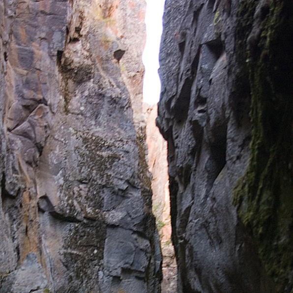pathway-shape
