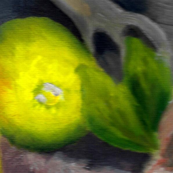 painted-lemon-shape