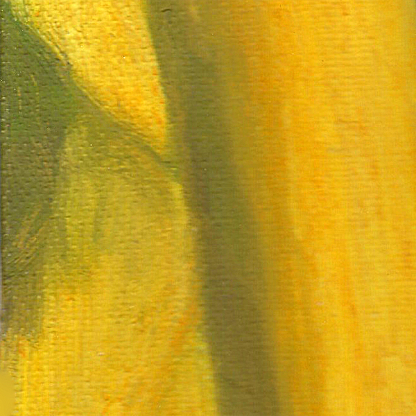 yellows-paint-shape