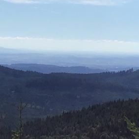 hills-shape