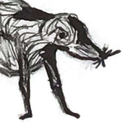 detail of dog