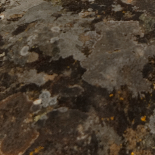 random-texture