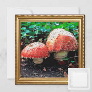 Red and white mushrooms with soil and green plants